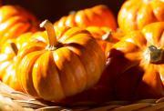 Halloween frågesport